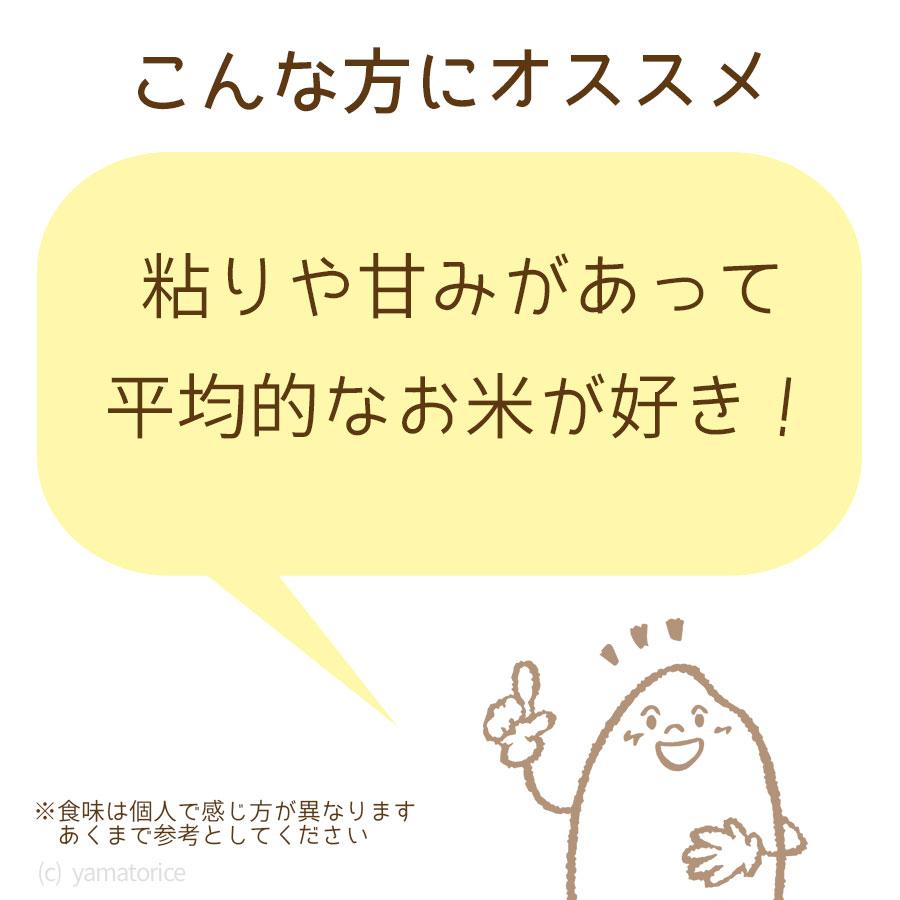 愛知コシヒカリ
