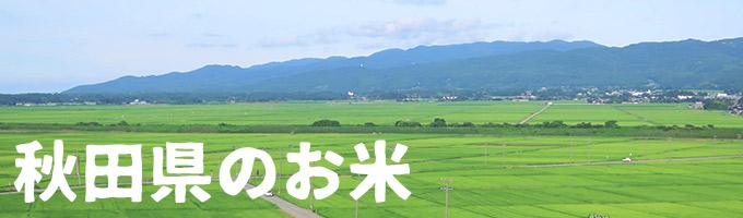 秋田県産カテゴリー