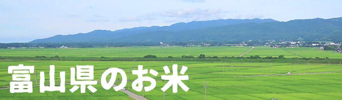 富山県産カテゴリー
