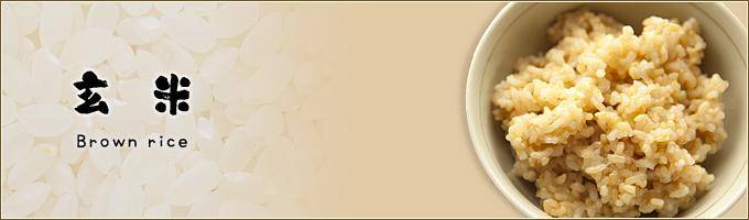 玄米|ヤマトライス