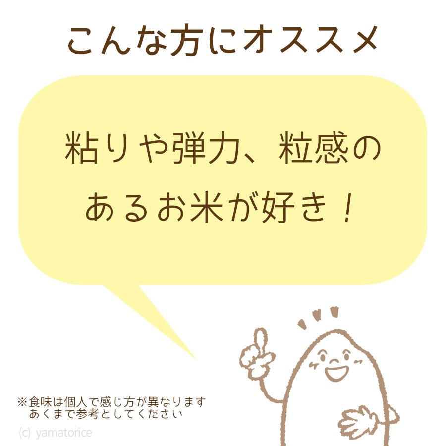 秋田県産あきたこまち